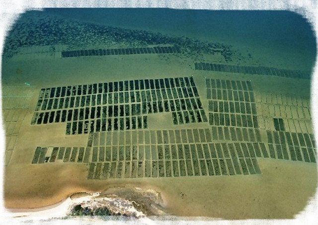 Aquaculture site in Virginia