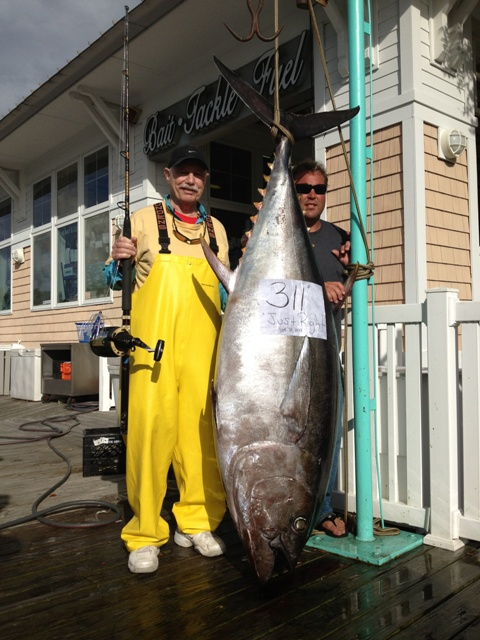 State Record Bigeye Tuna caught by Vic Gaspeny, of Tavernier