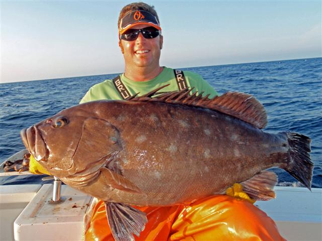Record Snowy Grouper