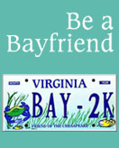 Chesapeake Bay Plate