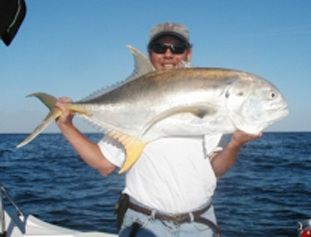Photo of Jack Crevalle