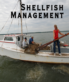 Shellfish Management