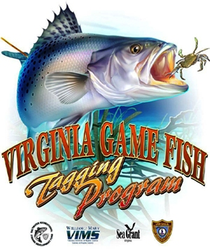 Virginia marine resources commission educational for Virginia game and fish