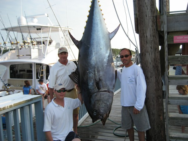 State Record Bluefin Tuna